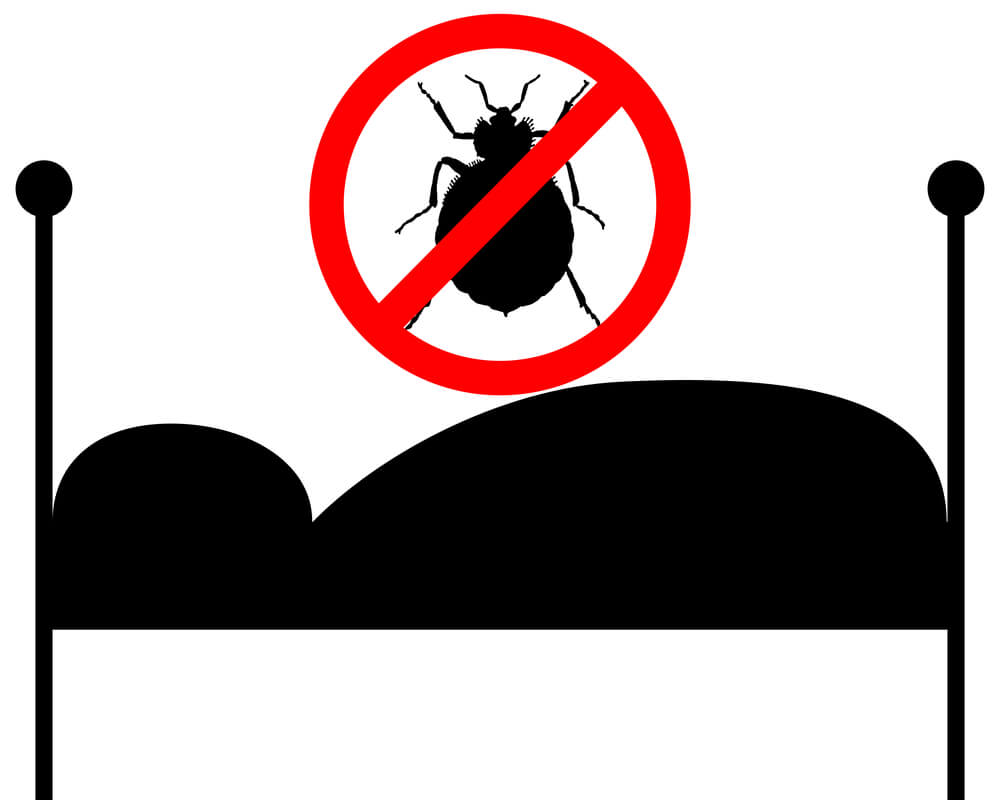Are Landlords Responsible For Bedbugs Quick And Dirty Tips