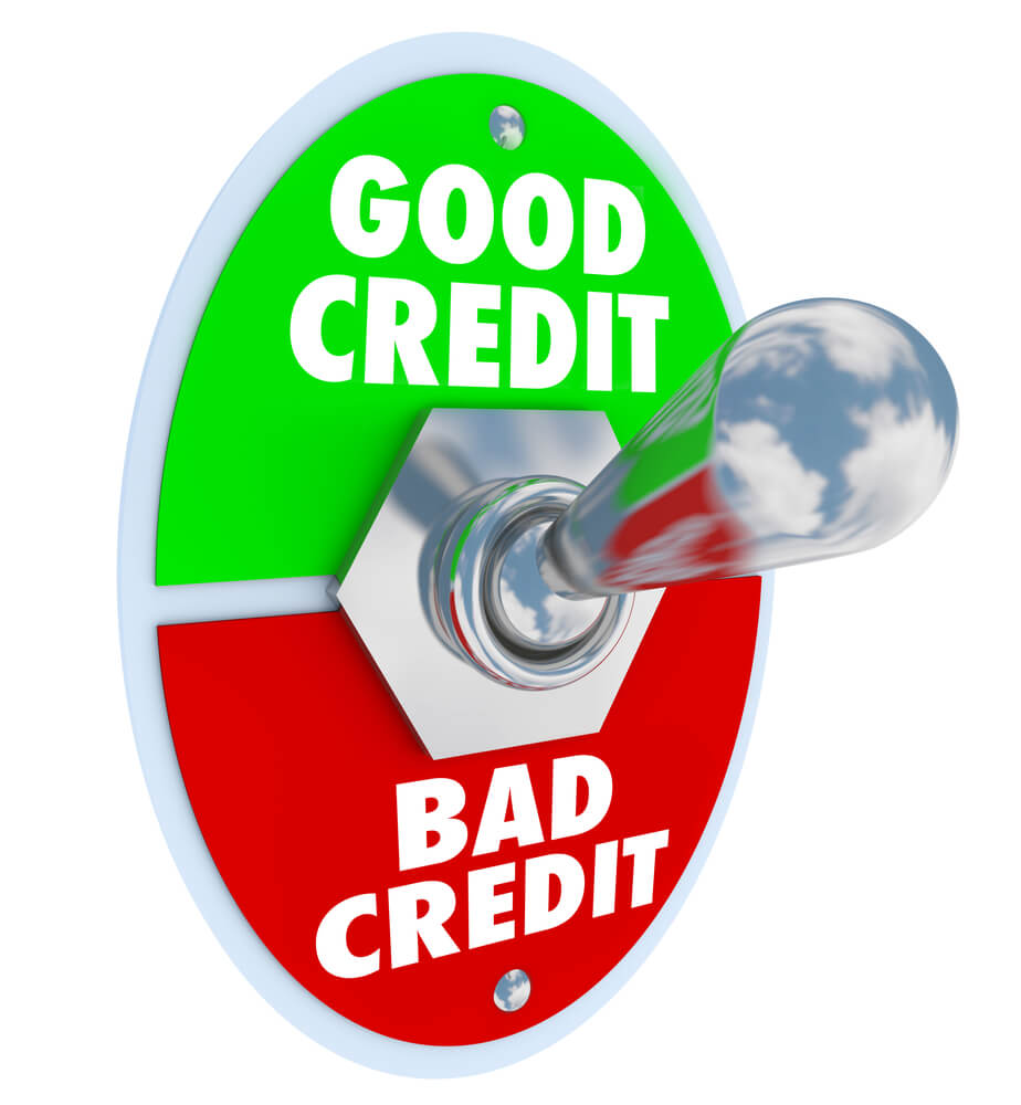 Loss Of Pet >> Should I Use a Credit Repair Company?