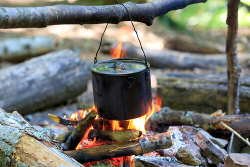 Domestic Ceo How To Cook While Camping Quick And