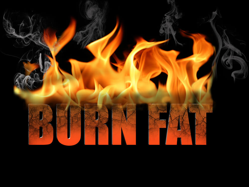 Does The Fat Burning Zone Really Work