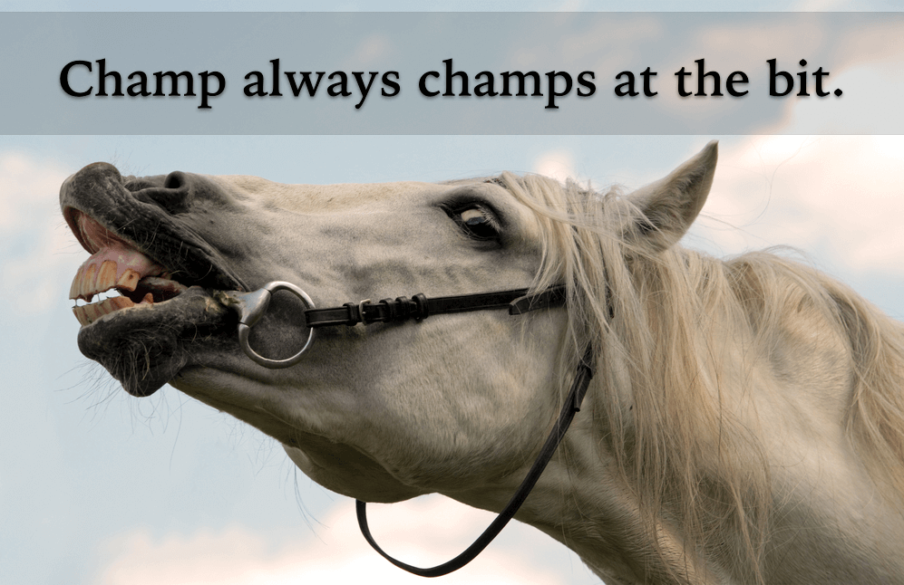 Mobile Car Repair >> Champ or Chomp at the Bit? | Grammar Girl