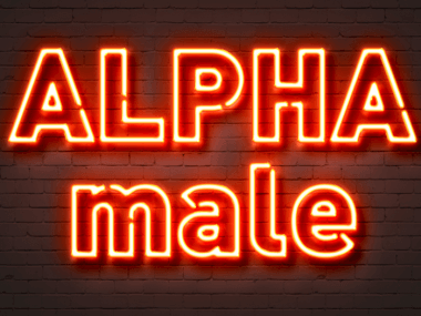 Alpha male neon sign.