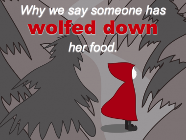 wolf or wood your food