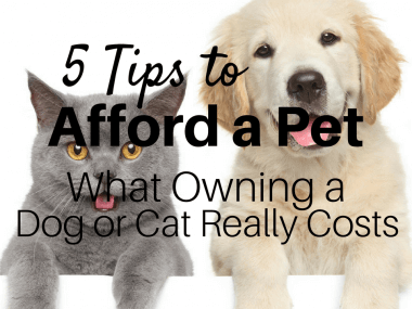 5 Tips to Afford a Pet—What Owning a Dog or Cat Really Costs