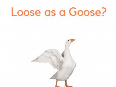 loose as a goose origins