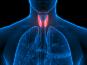 image of the thyroid glands