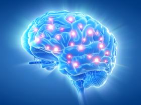 image of an active brain due to mindfulness