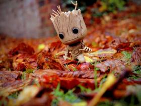Groot, a character from the Marvel universe who also speaks a language called Groot, is sitting in a pile of leaves.