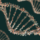 image of double helix representing a dna test