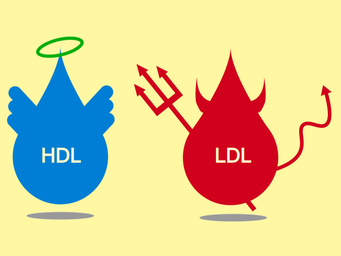 HD and LDLD cholesterol