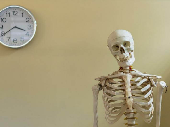 a skeleton at the office