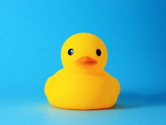 The word canard comes from an old story about a duck.