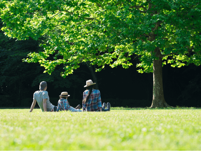 Family in lawn